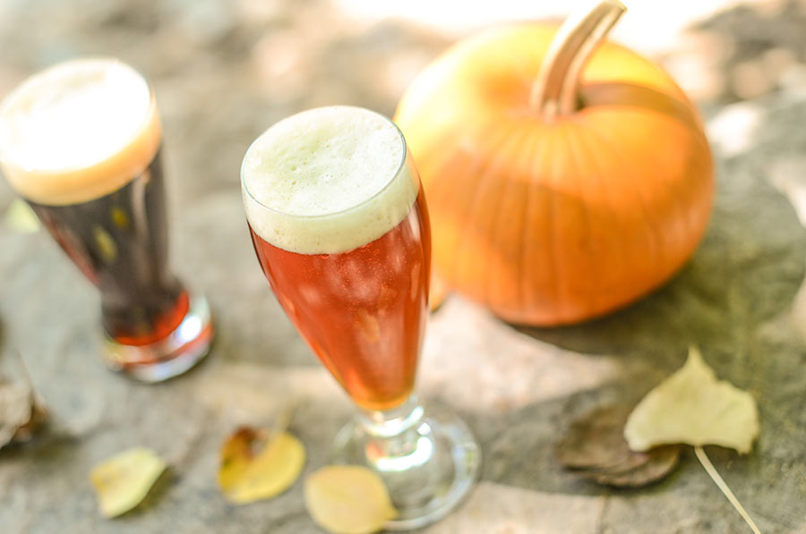 Craft Pumpkin Beer