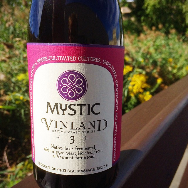 Mystic Brewery Vinland