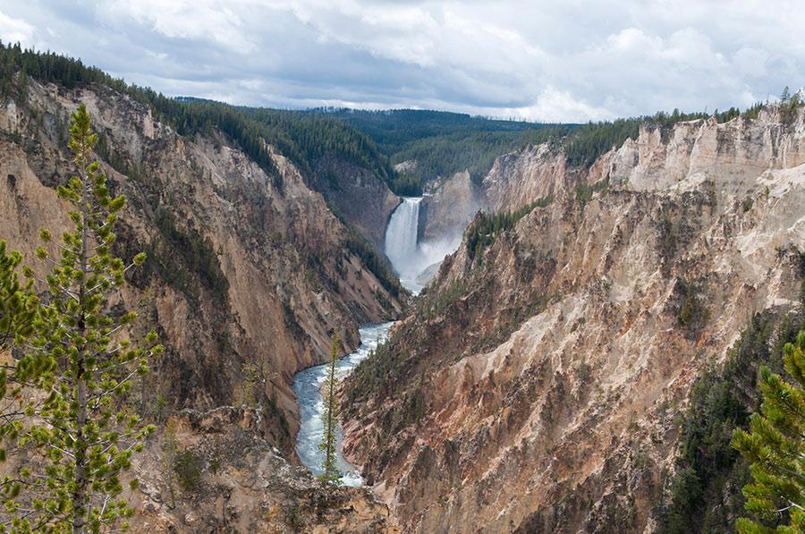 Craft Beer Yellowstone Tetons
