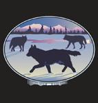 Alaskan Black IPA   Alaskan Brewing Company