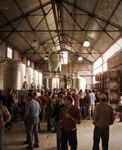 Farmhouse Beer: Rustic Meets Exquisite