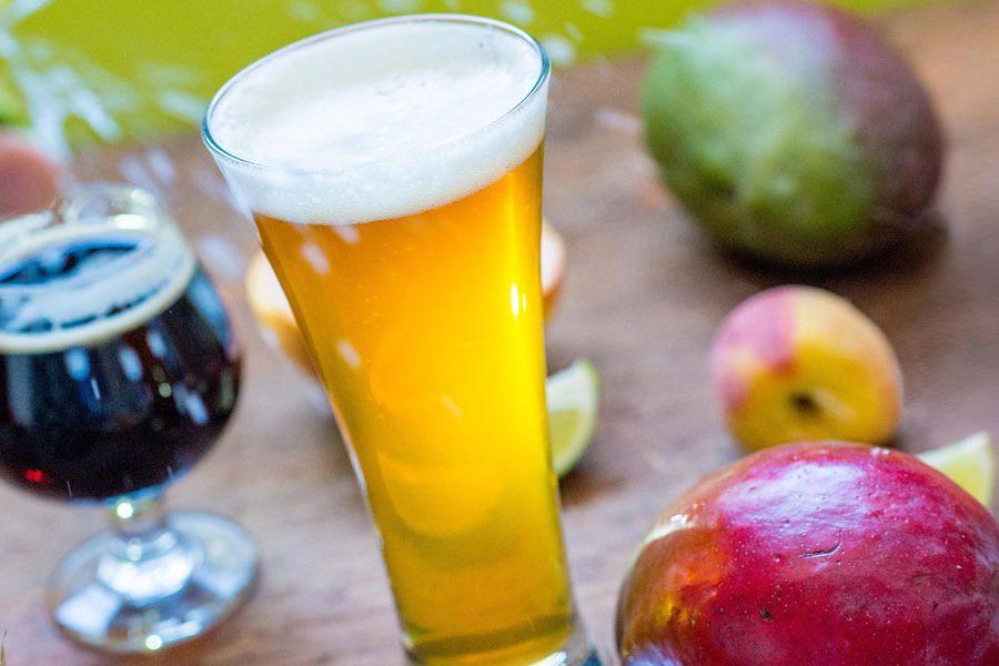 Summer Beer Ingredients
