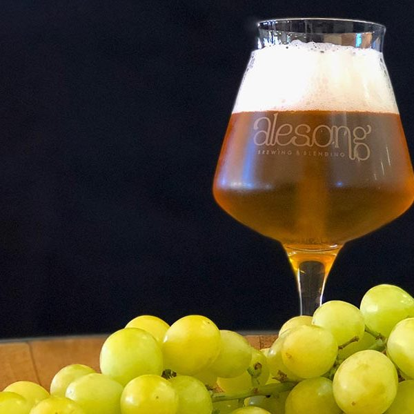 alesong brewing wine beer