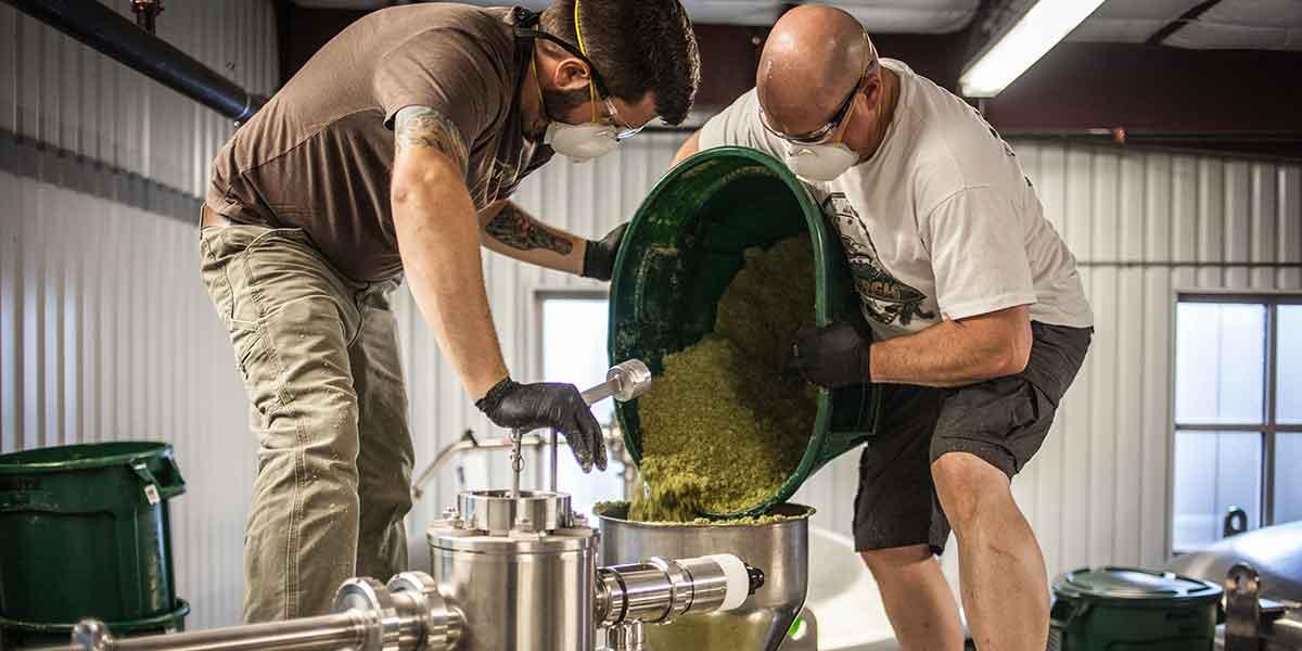 experimental hops odell