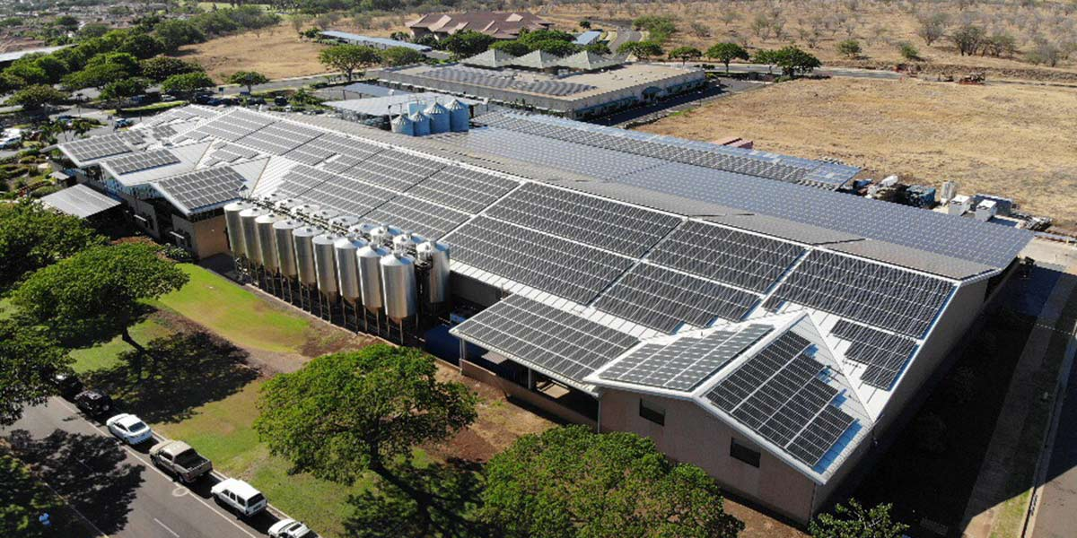 maui brewing solar array