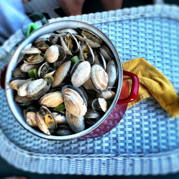clams made with pilsner