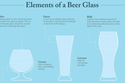 beer glass infographic