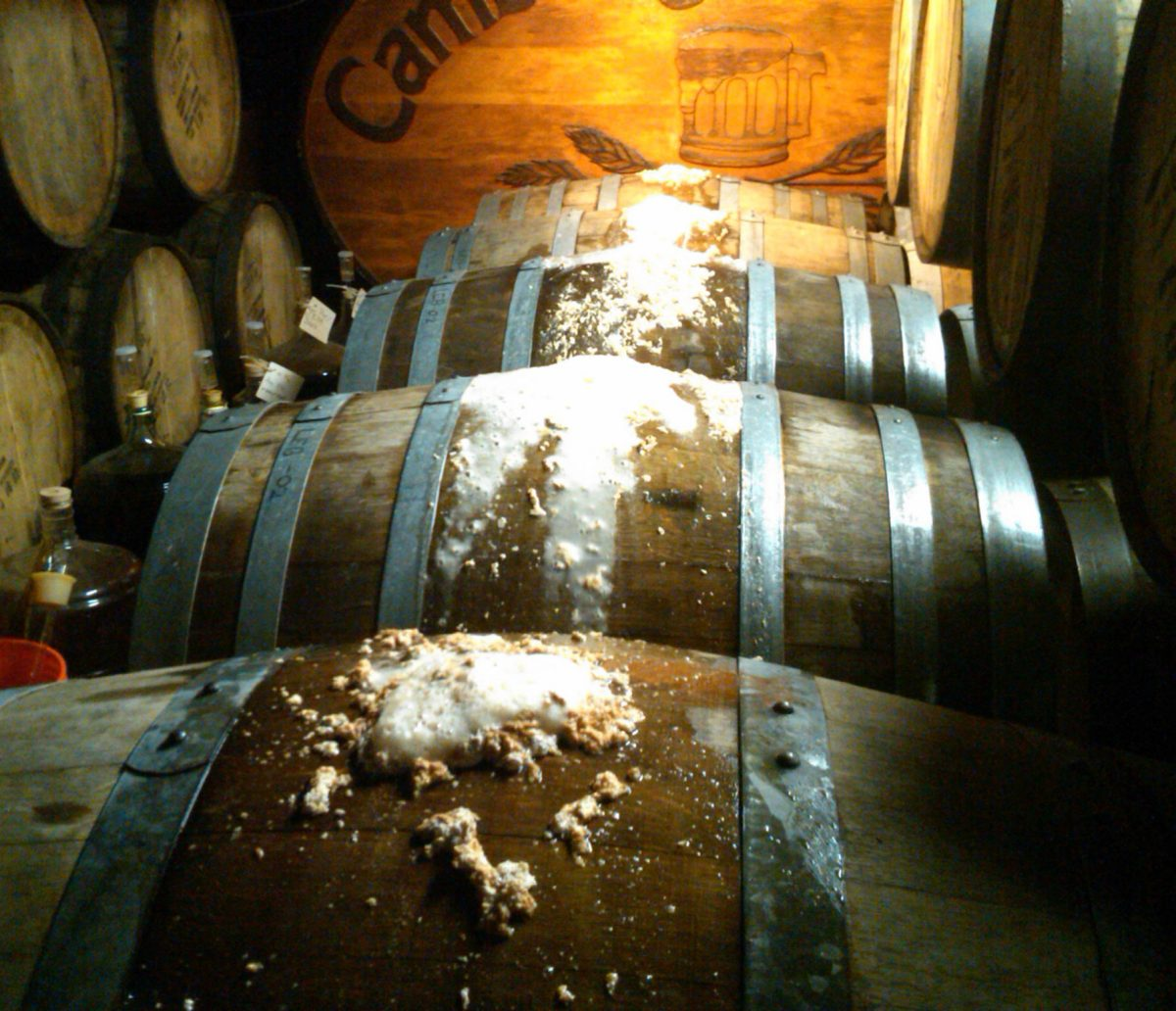 Solera Beer Barrels