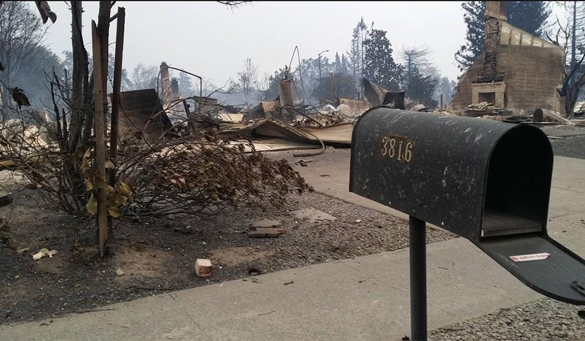 greg coll fogbelt brewing wildfire