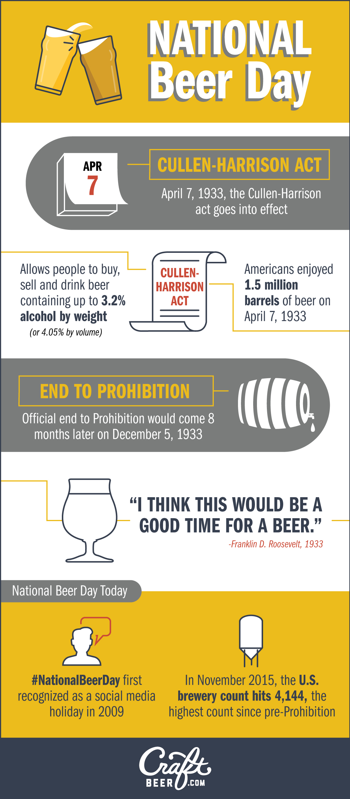 National Beer Day Infographic