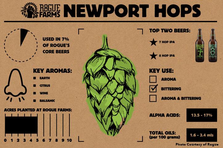 newport-hops