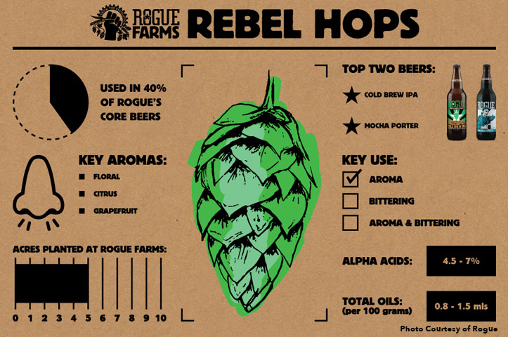 rebel-hops