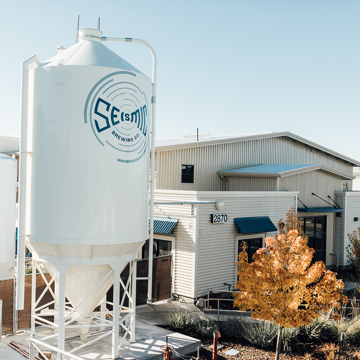 seismic brewing