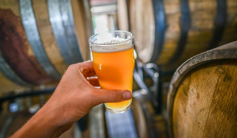 What Makes A Sour Beer Sour?