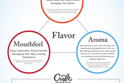 flavor triangle 3_17